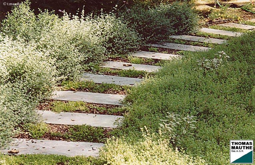 Natursteinplatten Garten ist nett design für ihr wohnideen