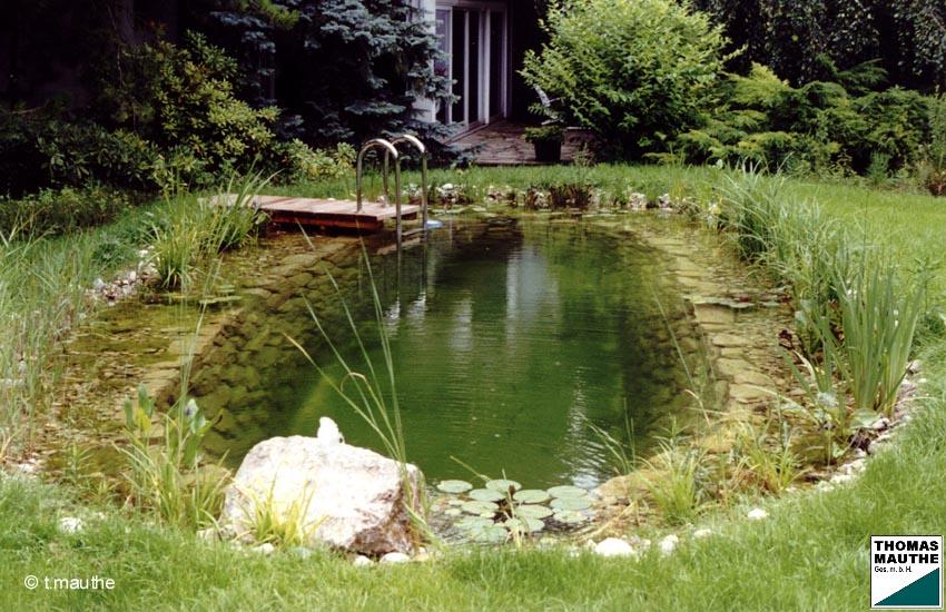 Schwimmteichbau schwimmteich gartenteich for Gartenteiche bilder