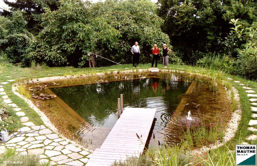 Schwimmteichbau schwimmteich gartenteich for Karpfen gartenteich
